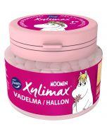 Fazer Xylimax Moomin täysksylitolipastilli Vadelma 90g